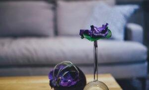 fragrance scenting