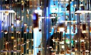 Modern Perfume Manufacturing