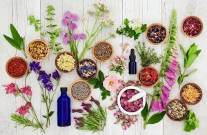 Essential Oils Most Used Fragrance Notes