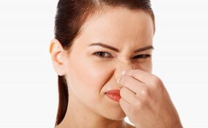 Effective Odor Control Products