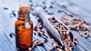 Clove Essential Oil Fragrances