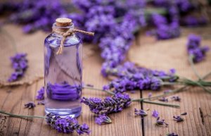 Lavender Oil Fragrance In Products