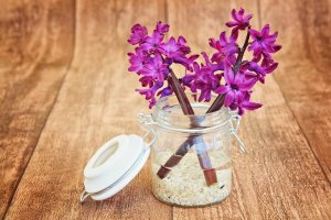 Hyacinth Floral Scent